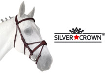 Crown your horse with a beautiful bridle