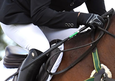 The New Show Jumping Whip Rule Explained