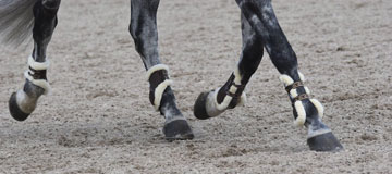Veredus Jumping Boots
