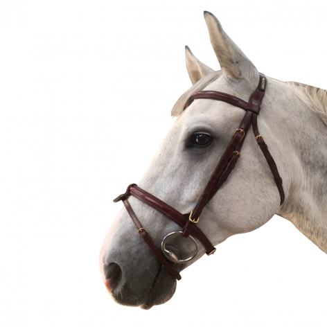 Flash Noseband Bridle