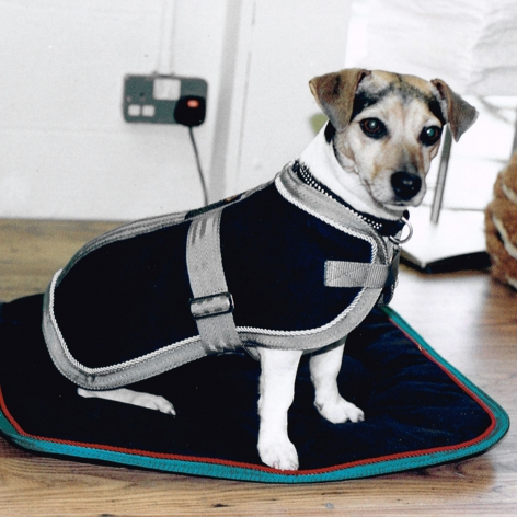 Equiport Wool Dog Coat