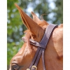Collection Flash Noseband Bridle B131 Image 3