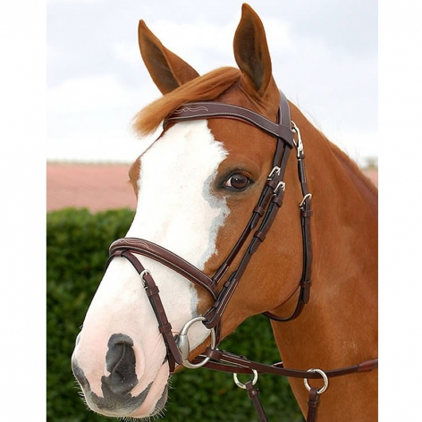 Working Collection Fancy Flash Noseband Bridle B161 Image 3