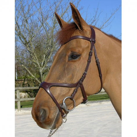X-Fit Anatomic Bridle B11X Image 2
