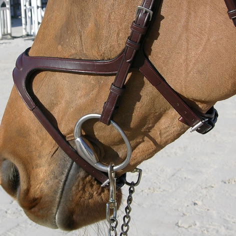 X-Fit Anatomic Bridle B11X Image 3