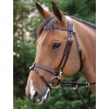 Brown Work Bridle