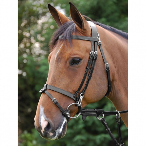 Working Collection Flat Flash Bridle B162 Image 3