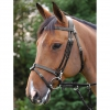 Black Work Bridle