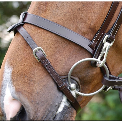 Working Collection Flat Flash Bridle B162 Image 4