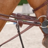 Leather Draw Reins