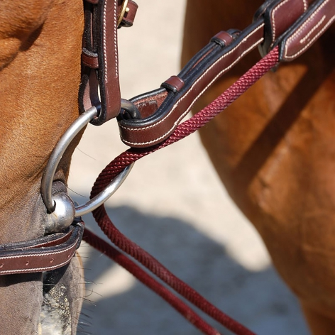 Collection Leather and Rope Draw Reins B732 Image 3