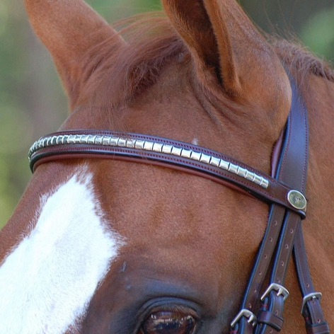 New English Silver Clincher Browband B003CS Image 2