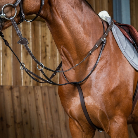 Dyon Working Running Martingale