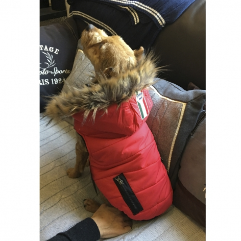 Equiline Dog Coat