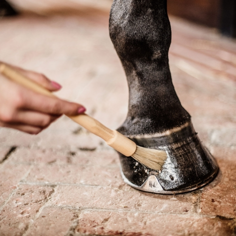 Deluxe Hoof Oil Brush