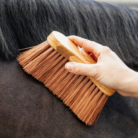 Grooming Deluxe Middle Brush