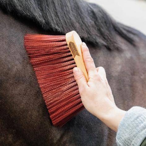Grooming Deluxe Long Brush