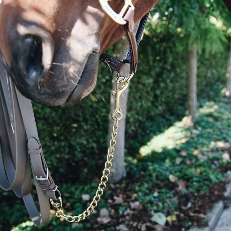 Stallion Chain Image 3
