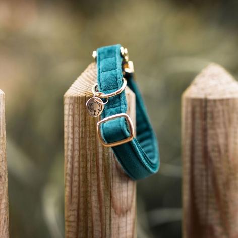 Kentucky Emerald Dog Collar