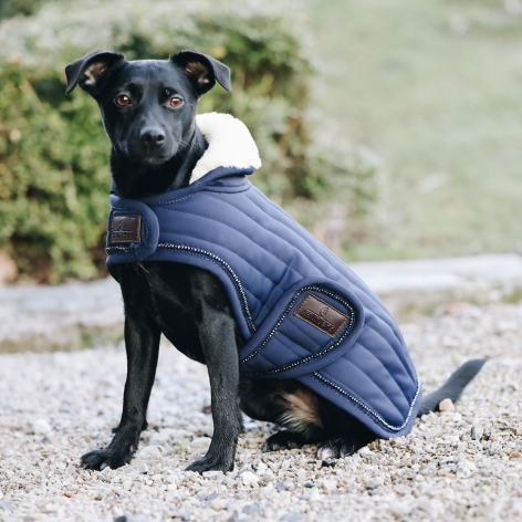 Sparkling Navy Dog Coat