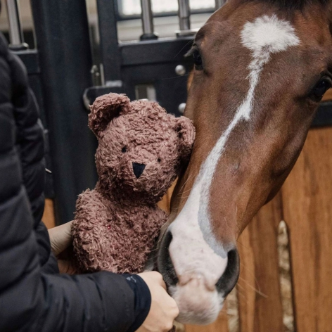 Bear Stable Toy