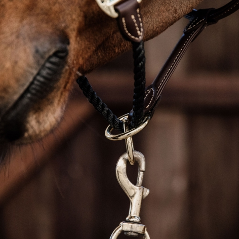 Leather Rope Headcollar Image 4