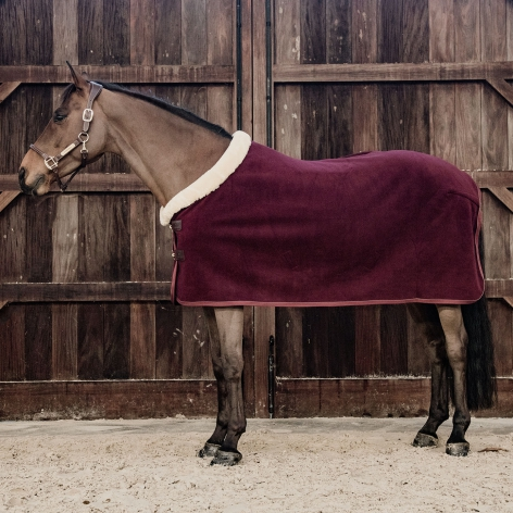 Kentucky Burgundy Fleece Rug