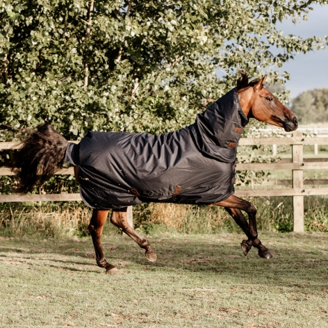 Turnout Rug All Weather Waterproof Classic 300g - Navy Image 4