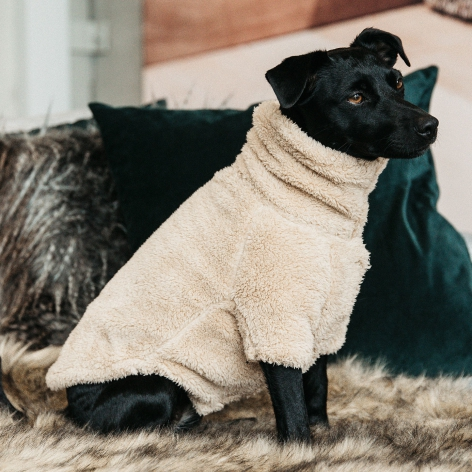 Kentucky Teddy Dog Fleece