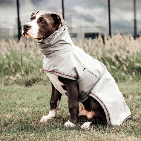 Kentucky Rain Dog Coat