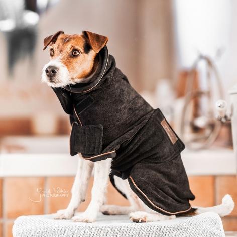Kentucky Dog Towel Coat