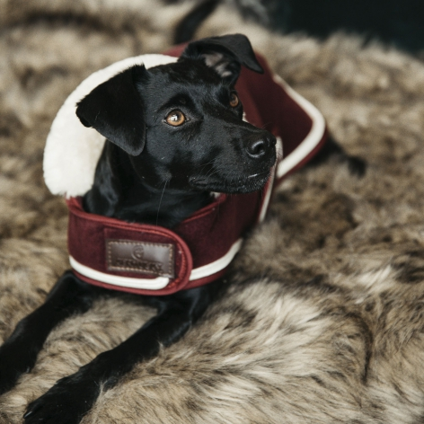 Heavy Fleece Dog Coat - Bordeaux Image 3