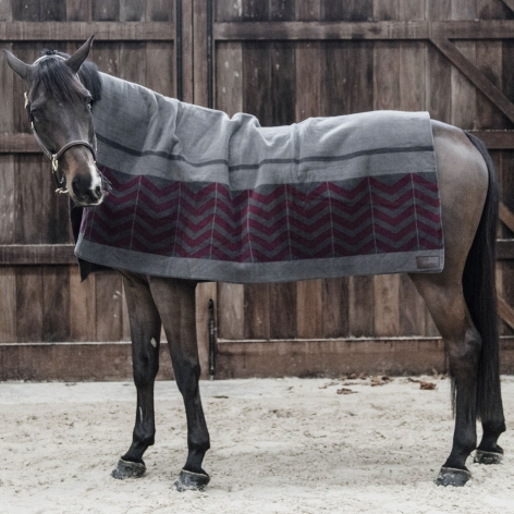 Kentucky Square Fleece Blanket
