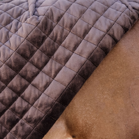 Show Rug - Navy Image 4