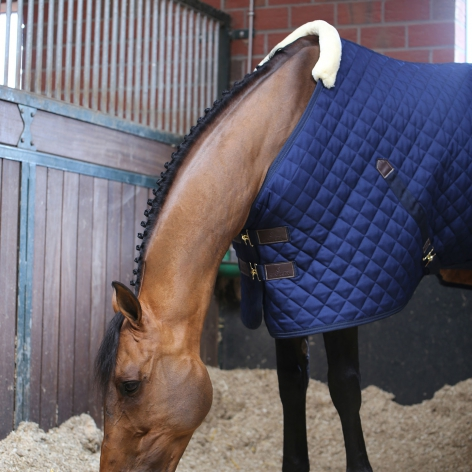 Stable Rug 400g - Navy Image 3
