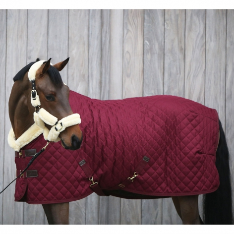 Kentucky Bordeaux Show Rug
