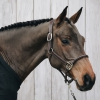 Kentucky Anatomic Headcollar