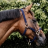 Kentucky Navy Headcollar