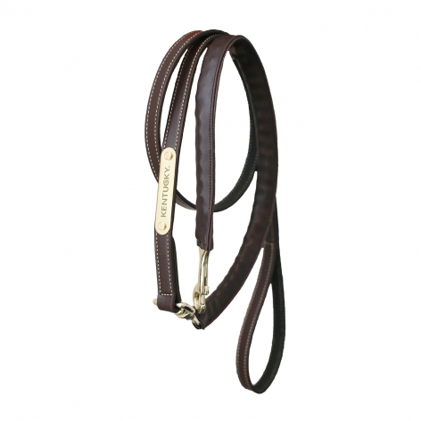 Kentucky Leather Lead Chain