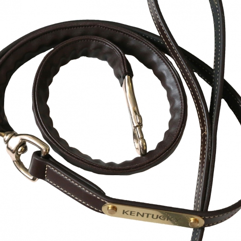 Leather Covered Lead Chain Image 3