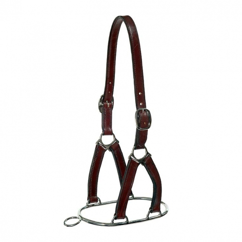 Leather Controller Headcollar Image 1