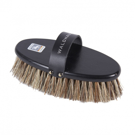 Dokr Dandy Brush