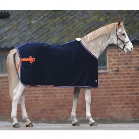 Velvet Horse Show Rug