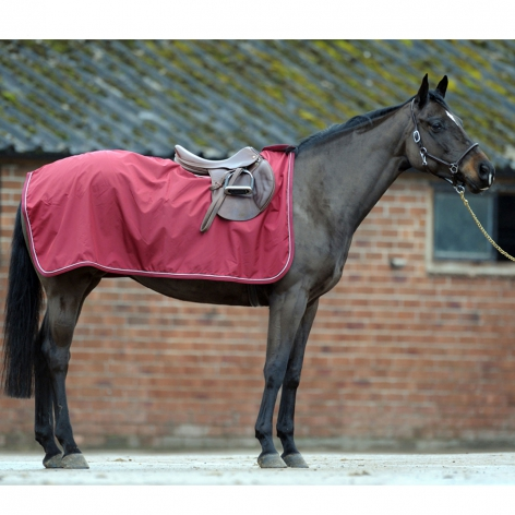 Equiport Waterproof Exercise Rug