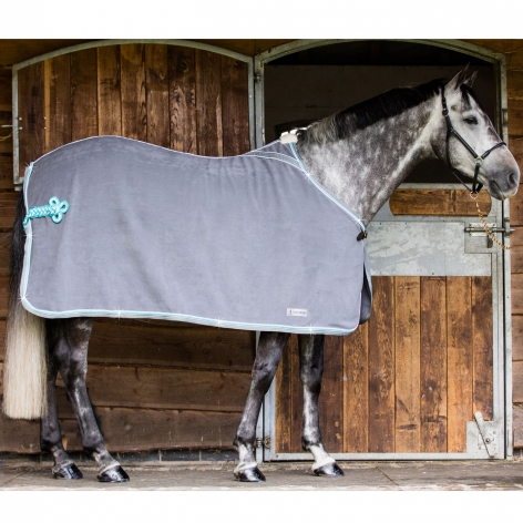 Diamante Fleece Show Rug