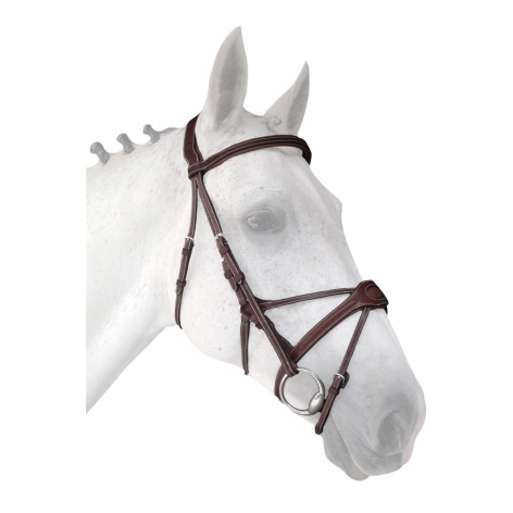 Silver Crown Spider Noseband Bridle