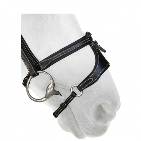 X-Nose Removable Noseband