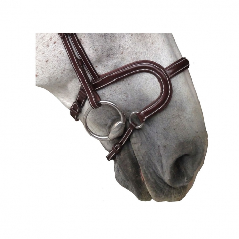 Silver Crown H Noseband