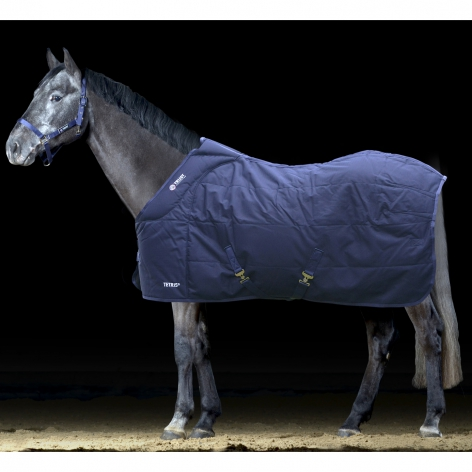 Trust Stable Rug